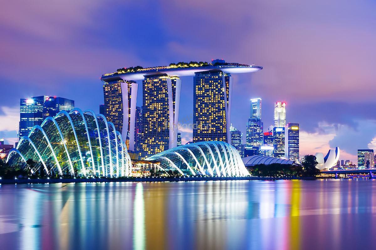 新加坡公司信息一点通